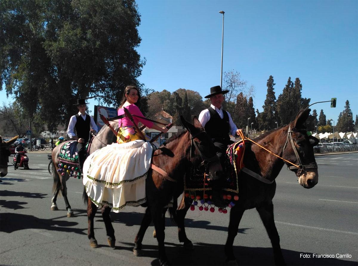 Muestra de Piostros en la XII Marcha Hípica en Córdoba